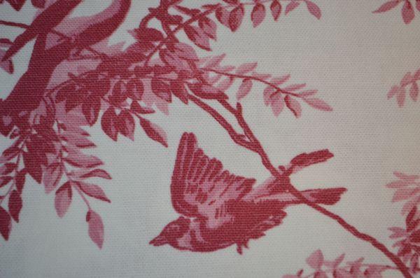 Ili---Uccello-rose